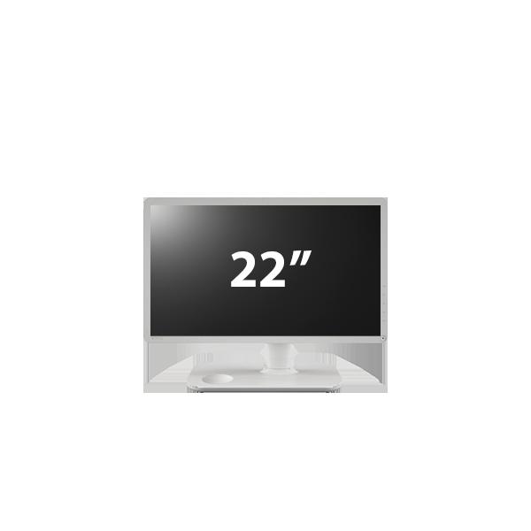 Benq 22″ Monitor